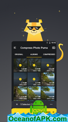 Compress-Photo-Puma-KB-MB-Resolution-Quality-v1.0.15-Premium-APK-Free-Download-1-OceanofAPK.com_.png