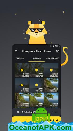 Compress-Photo-Puma-KB-MB-Resolution-Quality-v1.0.15-Premium-APK-Free-Download-1-OceanofAPK.com_.png