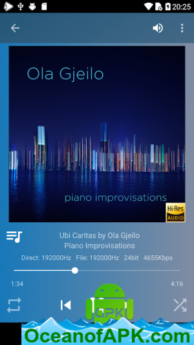 USB-Audio-Player-PRO-v5.6.1-Paid-APK-Free-Download-1-OceanofAPK.com_.png
